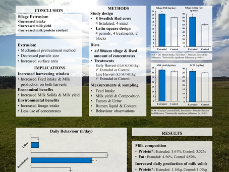 Silage extrusion and its effect on feed intake, milk production and ingestive behaviour