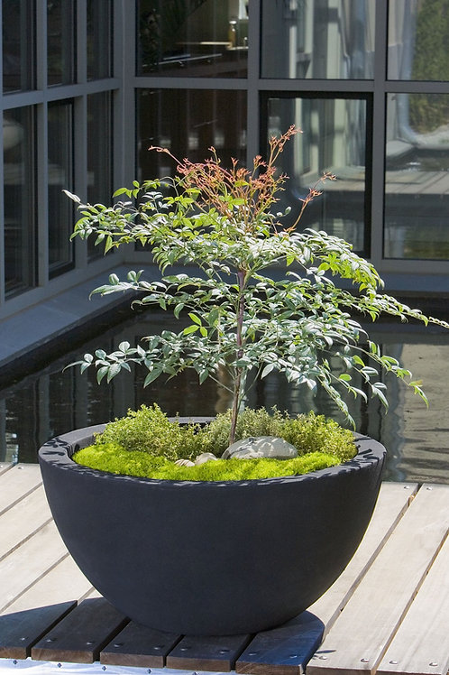 PICCADILLY LITE LARGE PLANTER - by Campania