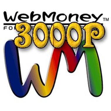 Webmoney 3000P