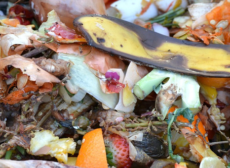 My Top Tips and Tools to Help Reduce Food Waste in the Kitchen