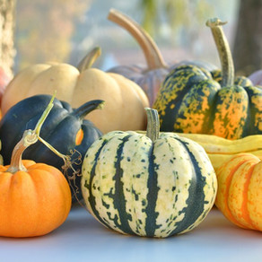 All About Pumpkins and Winter Squash