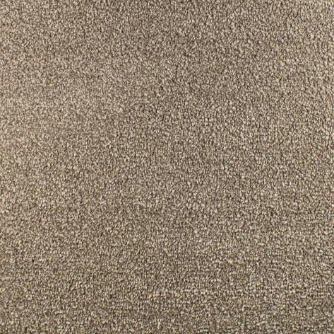 352-TRUFFLE-2-1200x1200.jpg