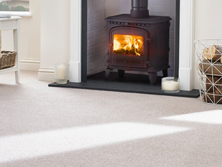 Best for Wool Carpet