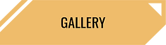 Gallery_Yellow.png