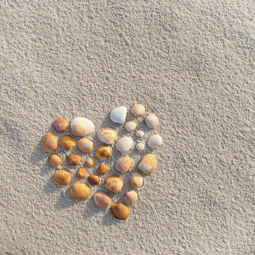 Care with a shell shaped heart on the beach