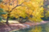 Rainbow Lake, Hendersonville, NC by Jonathan Jackson - Fine art photography for sale on www.mountainmultimedia.net