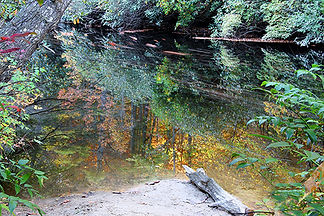 Little River, Dupont State Park, NC by Jonathan Jackson - Fine art photography for sale on www.mountainmultimedia.net