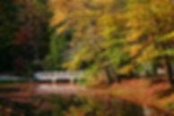 Carl Sandburg's Bridge, Hendersonville, NC by Jonathan Jackson - Fine art photography for sale on www.mountainmultimedia.net