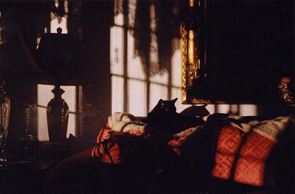 Film Still-13D.jpg