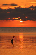 Key West, FL by Jonathan Jackson - Fine art photography for sale on www.mountainmultimedia.net