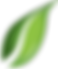 clipart-of-leaf-no-background-50.png