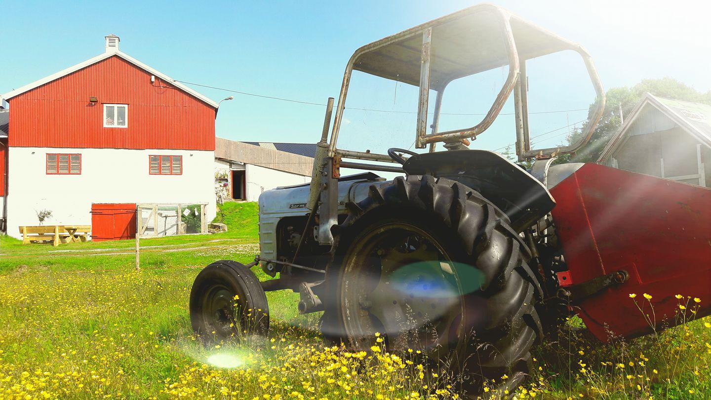 Tracteur en été