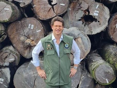 Ricardo Salles e presidente do Ibama são alvos de operação que investiga exportação de madeira