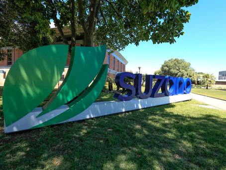 Suzano lança Programa de Mentoria de Startups