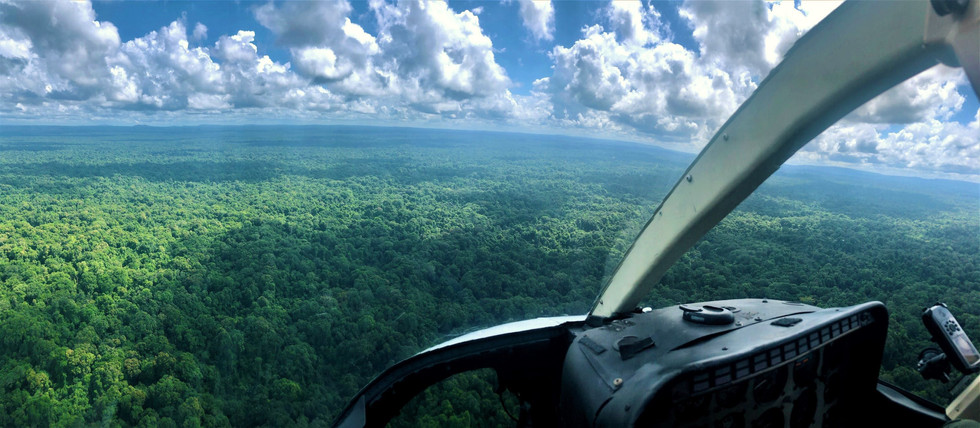 Helicopter View Guyana.jpg