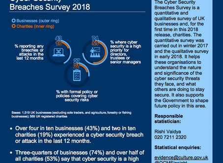Cyber Security Breaches Survey 2018
