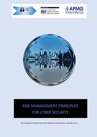 Risk Management Principles for Cyber Sec