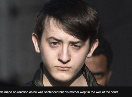 Two years for teen 'cyber terrorist' who targeted US officials