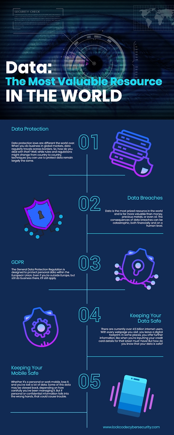 Cyber Infographic 2 DATA PROTECTION WIX.png