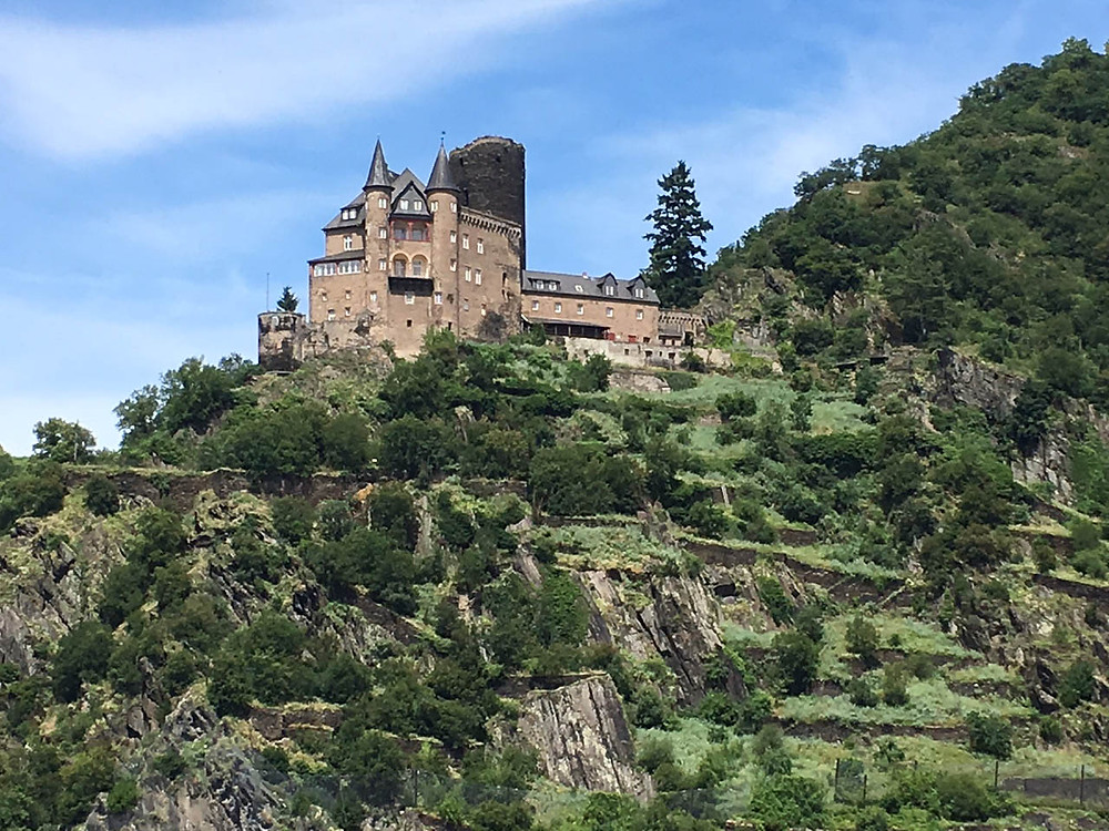 Large castle high above the Rhine River, with green trees and bushes
