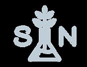 SuperiorNano_Logo-10.png