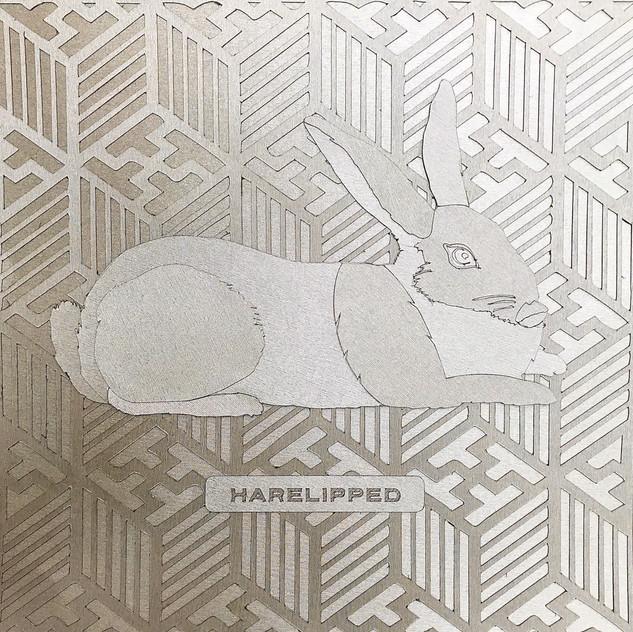 PeterERoberts_Harelipped_PapercutAssembl