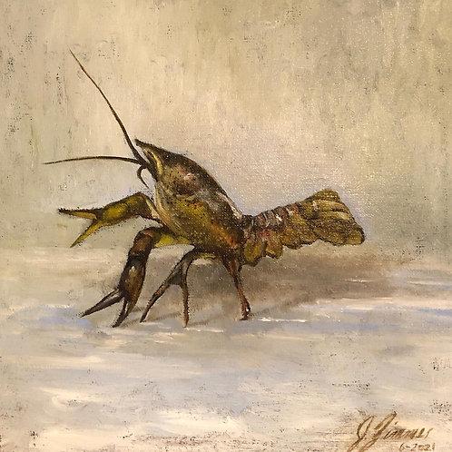 "Jason Zimmer-""Crawfish"""