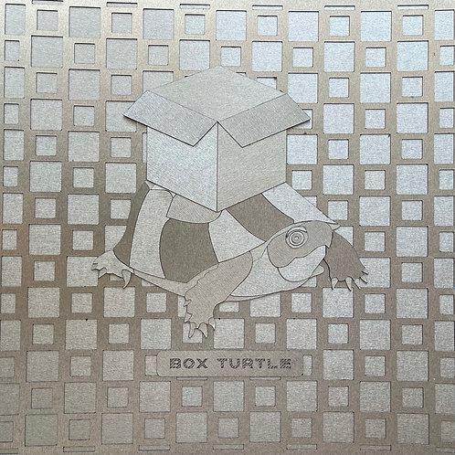 "Peter E. Roberts-""Box Turtle"""