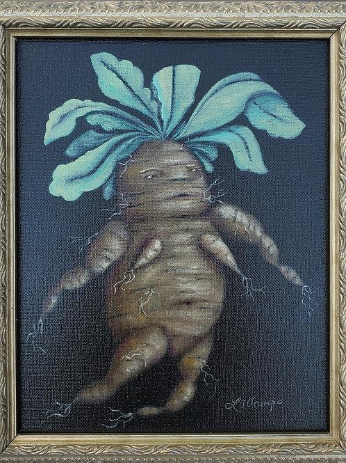 "Lisa Ocampo - ""Ms. Mandrake"""