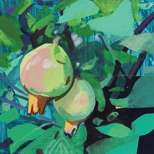 Dana Richardson-Pomegranate Study