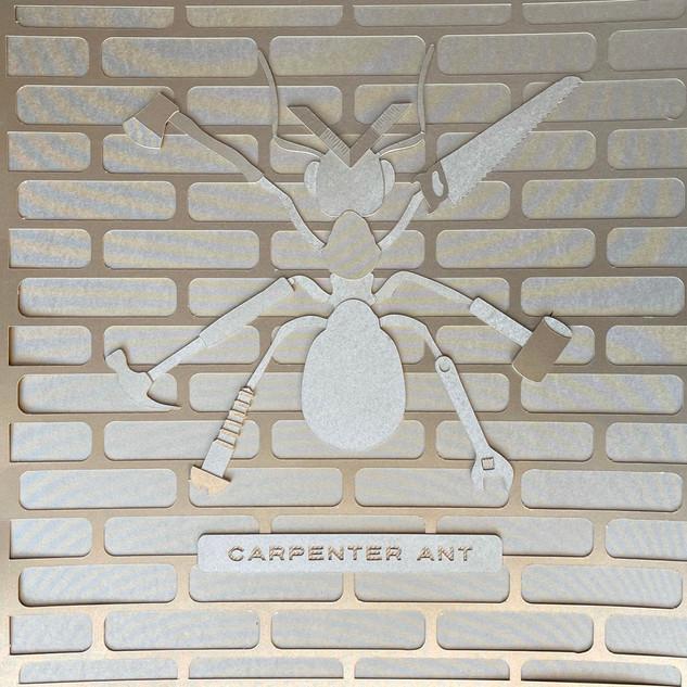 PeterERoberts_CarpenterAnt_12x12_Papercu