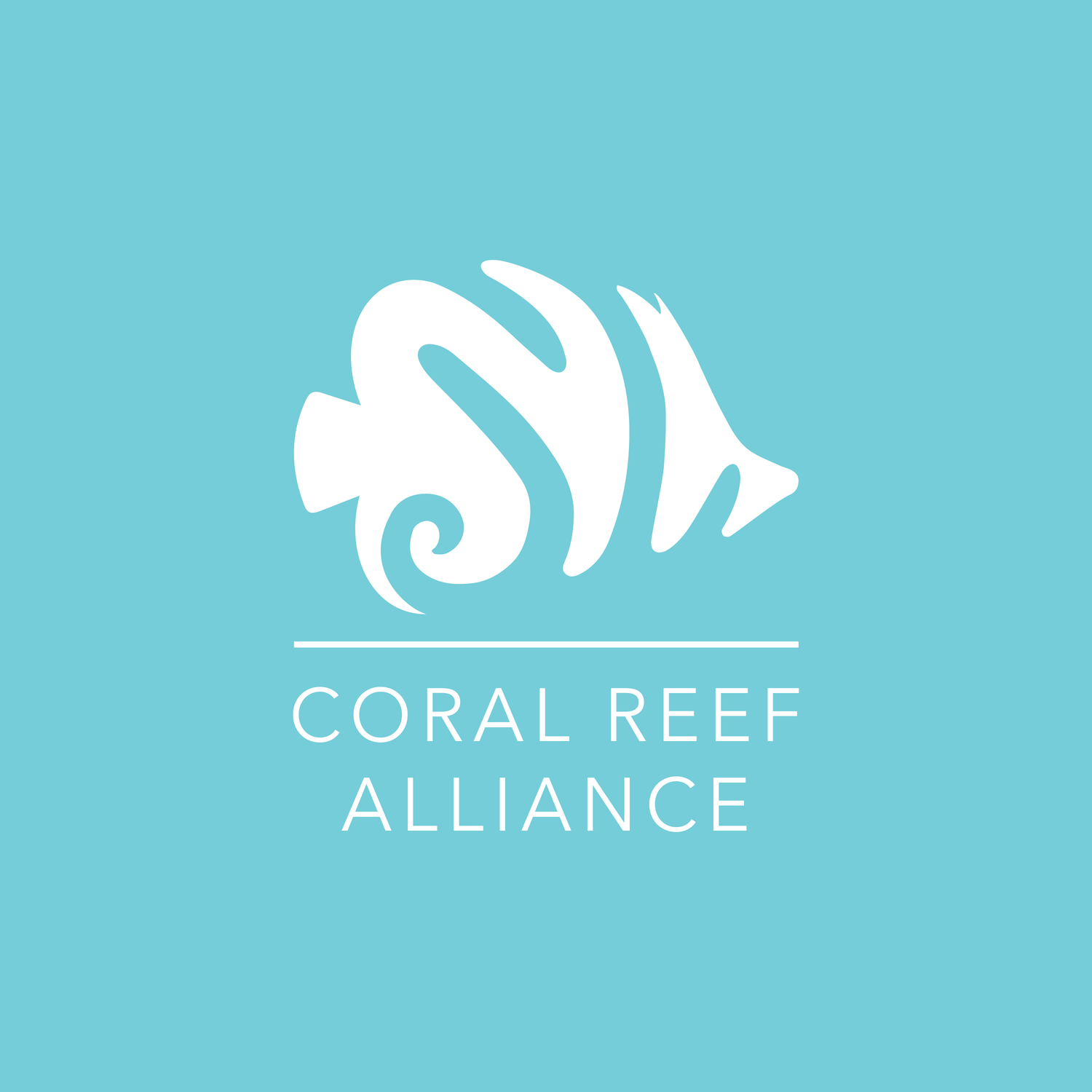 Coral-Reef-Alliance-Job-Vacancy
