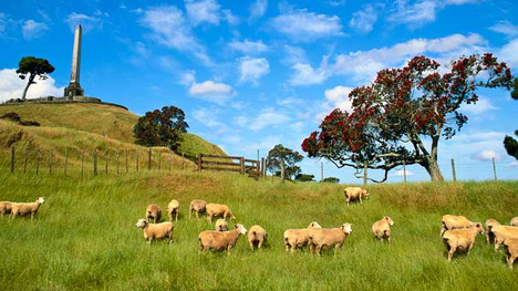 One Tree Hill, Auckland NZ