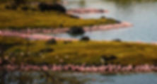 momela-lakes-arusha-1024x330.jpg