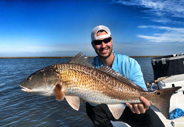 redfish on fly
