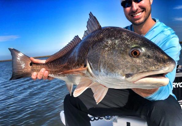 redfish popper