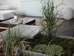 Interior Garden Zen