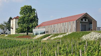 MAROF WINERY, Slovenia