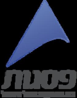 logo פסגות