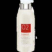 02_shampoo.png