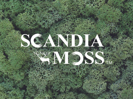 (2021.04.01)スカンディアモス カタログできました