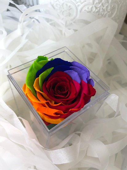 Single Infinity Preserved  Rose in the Acrylic Box