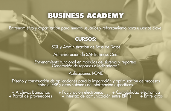 Business Academy.png