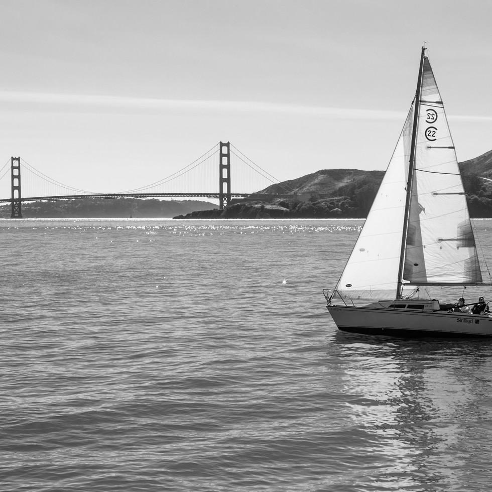 San Francisco Sail #2