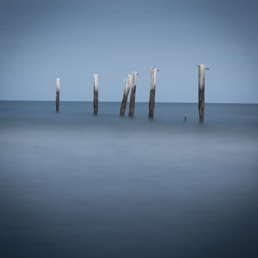 South Carolina Blur