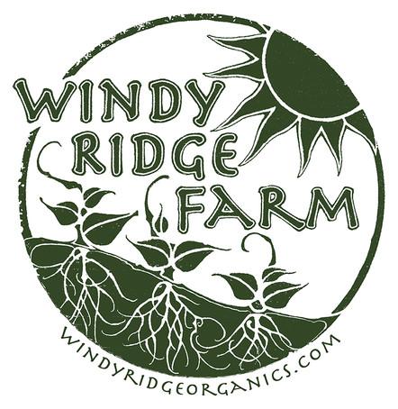 windy_ridge.jpg