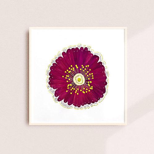 Burgundy Poppy Print