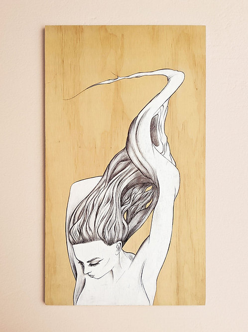 Daphne Ink Drawing on Plywood