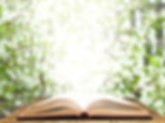 AdobeStock_141994799_edited.jpg