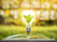 AdobeStock_218963161_edited.jpg